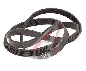 Ремень приводной поликлиновой 6PK1555 VW Caravella,T5 DONGIL 6PK1555, 03L903137H