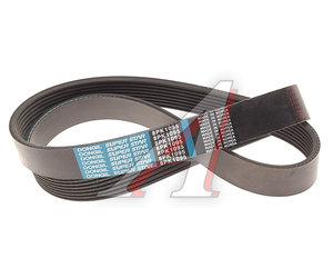 Ремень приводной поликлиновой 8PK1095 DONGIL 8PK1095
