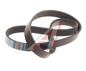 Ремень приводной поликлиновой 6PK1183 DONGIL 6PK1183