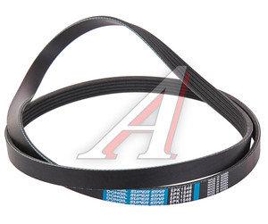 Ремень приводной поликлиновой 5PK1546 OPEL Astra G,H,Corsa D DONGIL 5PK1546, 55350421